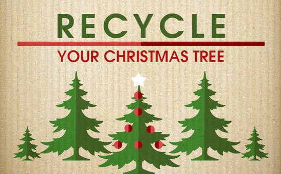 Christmas_tree_recycling_Knox